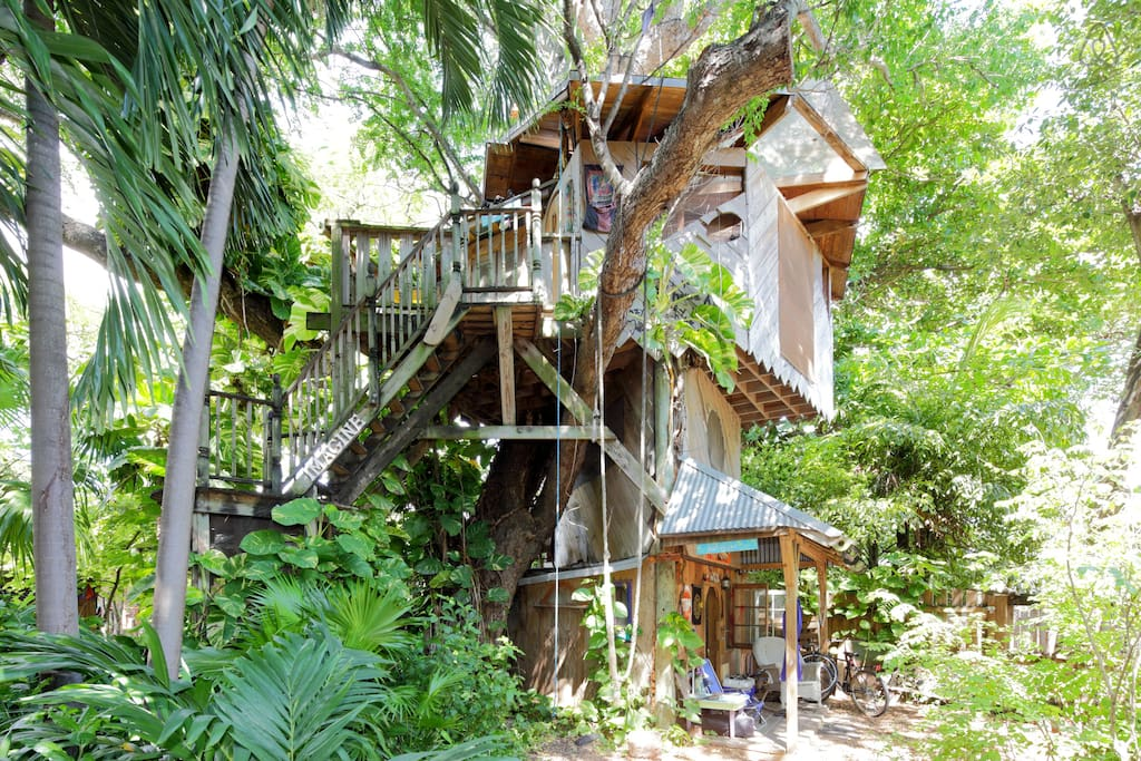 frugal airbnb tree house