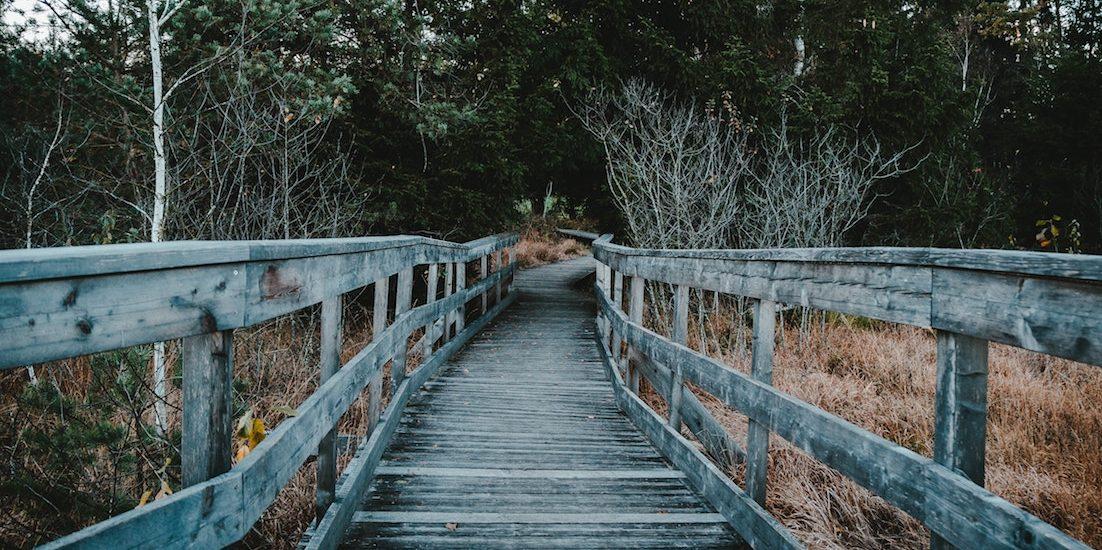 bridge period