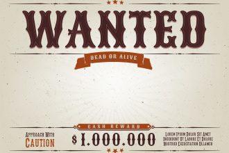 Make Money by Bounty Hunting